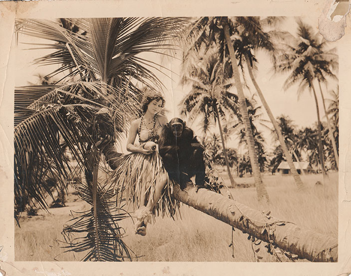 6_archivo general de puerto rico_ coleccion viguie_romance tropical